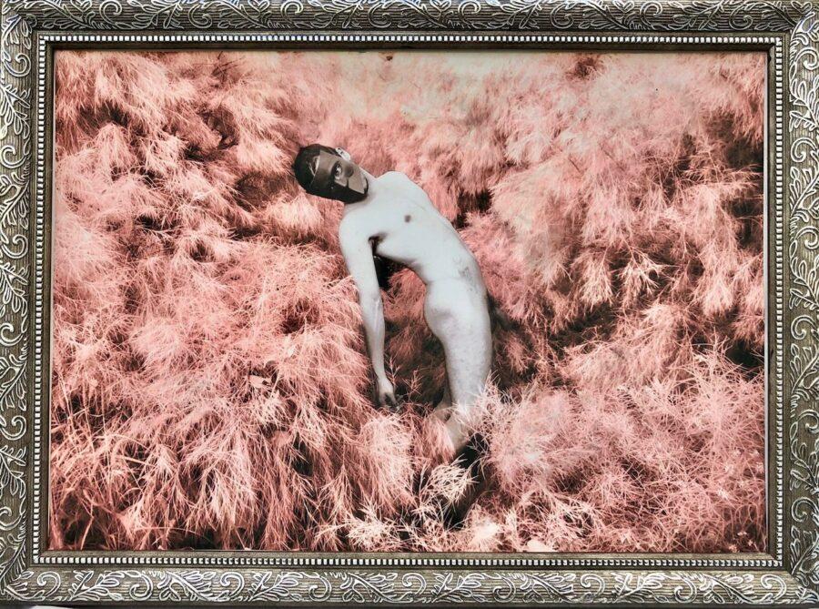 Fall. Image 1. Fields.
